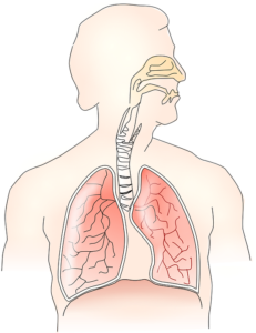 Improve Your Breathing With Functional Rhinoplasty in Scottsdale